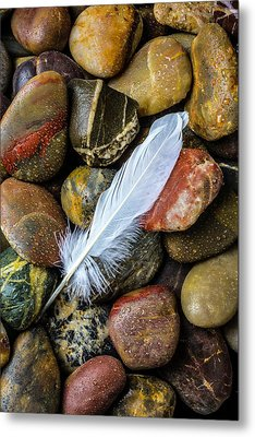 White Feather On River Stones Metal Print by Garry Gay