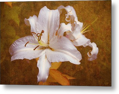 White Lilies. Time To Be Romantic Metal Print by Jenny Rainbow