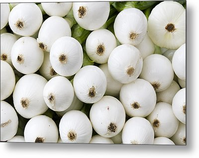 White Onions Metal Print by John Trax