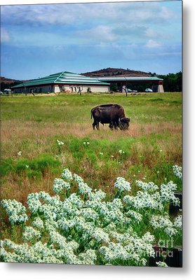 Wichita Mountain Wildlife Reserve Welcome Center Verticle Metal Print by Tamyra Ayles