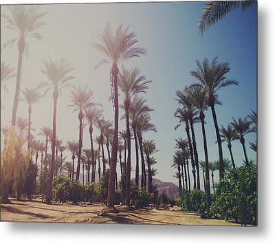 Wide Awake Metal Print by Laurie Search
