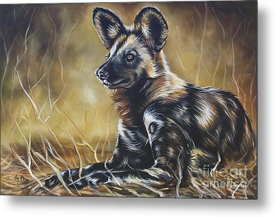 Wild Dog Metal Print by Ilse Kleyn