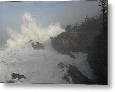 Wild Oregon Coast Metal Print by James Thompson