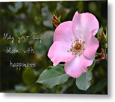 Wild Rose With Quote Metal Print by Marion McCristall