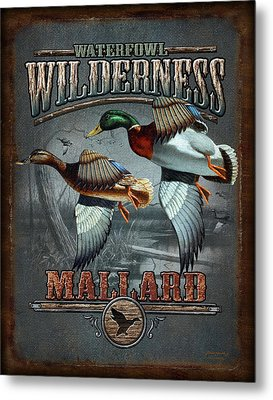 Wilderness Mallard Metal Print by JQ Licensing