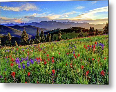 Wildflower Sunset Hill Metal Print by Scott Mahon