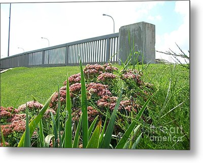Wildflowers Beside The Bridge Metal Print by Marsha Heiken