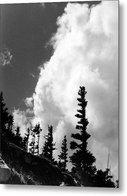 Wind Formed Metal Print by Allan McConnell