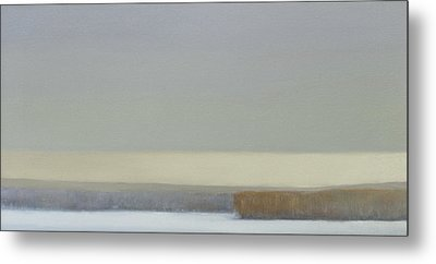 Winter At White Rock Lake Sold Metal Print by Cap Pannell