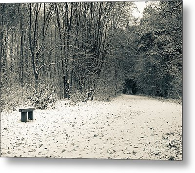 Winter Bridleway Metal Print by Andy Smy