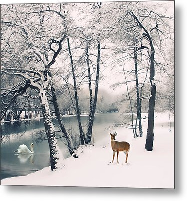 Winter Calls Metal Print by Jessica Jenney