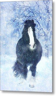 Winter Faith Metal Print by Jamie Mammano