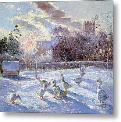 Winter Geese In Church Meadow Metal Print by Timothy Easton