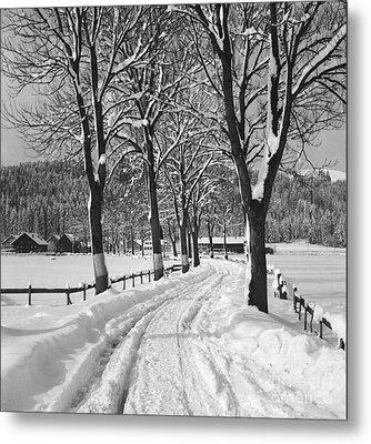 Winter Landscape Metal Print by German School