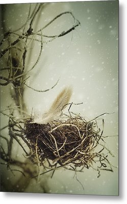 Winter Lullaby Metal Print by Amy Weiss
