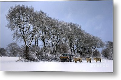 Winter Morning On The Farm Metal Print by Sophie De Roumanie