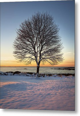 Winter On The Coast Metal Print by Eric Gendron