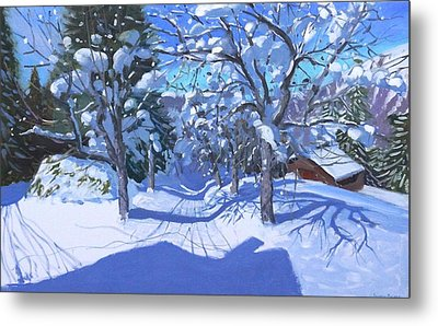 Winter Orchard  Morzine Metal Print by Andrew Macara