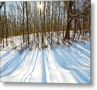 Winter Shadows Metal Print by Tim Fitzwater