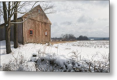 Winter Warmth Metal Print by Bill Wakeley