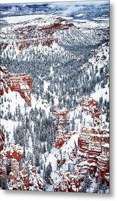 Winter Wonder Metal Print by James Marvin Phelps