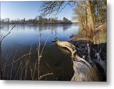 Winter's Charm Metal Print by Robert Lacy
