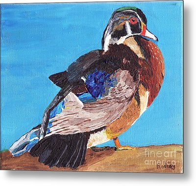 Metal Print featuring the painting Wood Duck by Rodney Campbell