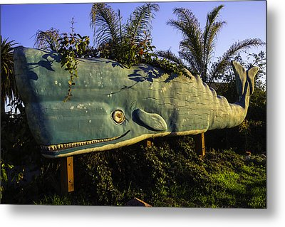 Wooden Green Whale Metal Print by Garry Gay