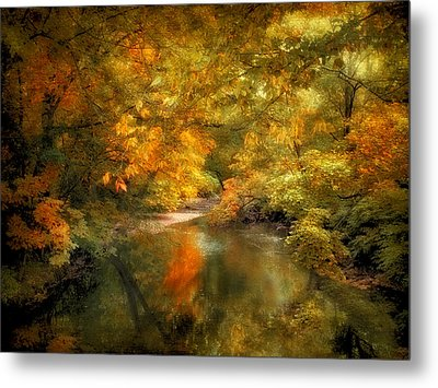 Woodland River Lights Metal Print by Jessica Jenney