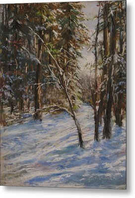 Woods And Snow At Two Below Metal Print by Jack Skinner