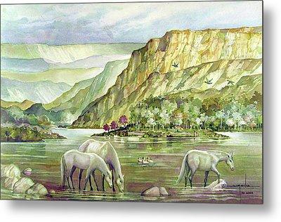 Ws2000dc023 Landscape Bolivia 18x12 Metal Print by Alfredo Da Silva