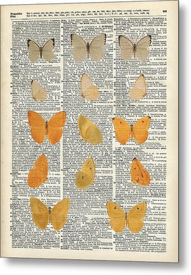 Yellow Butterflies Over Dictionary Book Page Metal Print by Jacob Kuch