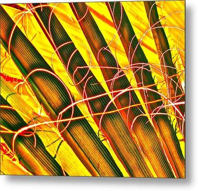 Yellow Palm Fun Metal Print by Gwyn Newcombe