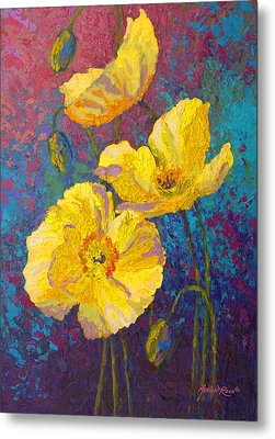 Yellow Poppies Metal Print by Marion Rose