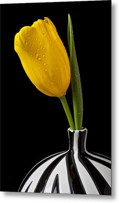 Yellow Tulip In Striped Vase Metal Print by Garry Gay