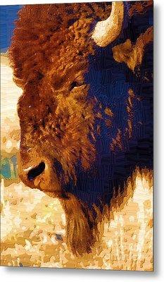 Yellowstone Buffalo Metal Print by Diane E Berry