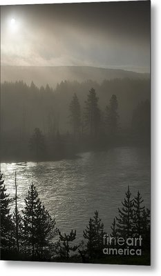 Yellowstone River Fog Metal Print by Sandra Bronstein