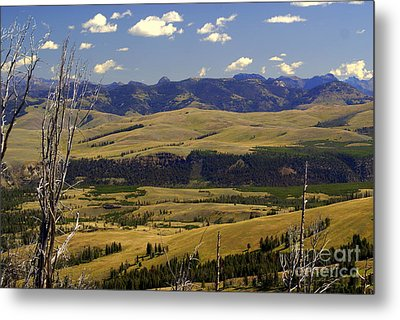 Yellowstone Vista 2 Metal Print by Marty Koch