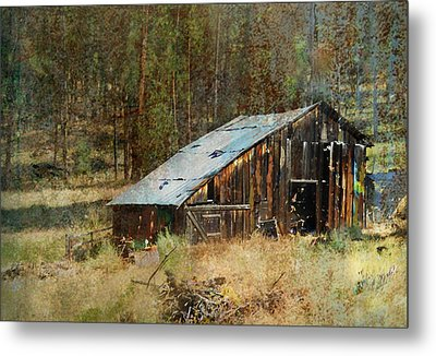Yesteryear Shed 2 Metal Print by Dale Stillman
