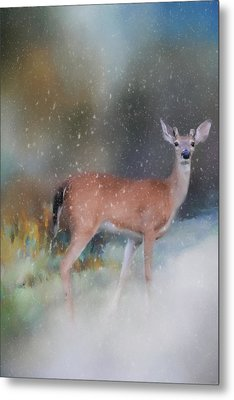 Young Buck In The Snow Deer Art By Jai Johnson Metal Print by Jai Johnson