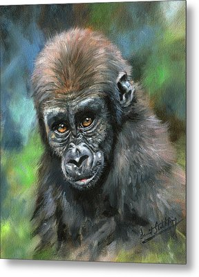 Young Gorilla Metal Print by David Stribbling