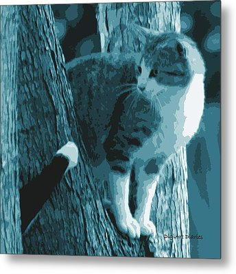 Youre Kidding Right Metal Print by DigiArt Diaries by Vicky B Fuller