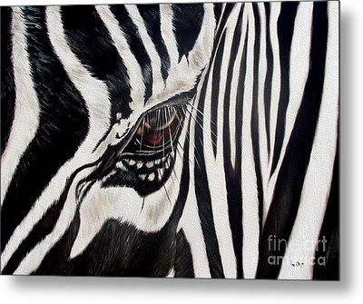 Zebra Eye Metal Print by Ilse Kleyn