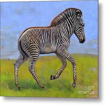Zebra Foal  Metal Print by Svetlana Ledneva-Schukina