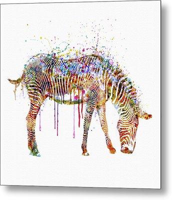 Zebra Watercolor Painting Metal Print by Marian Voicu