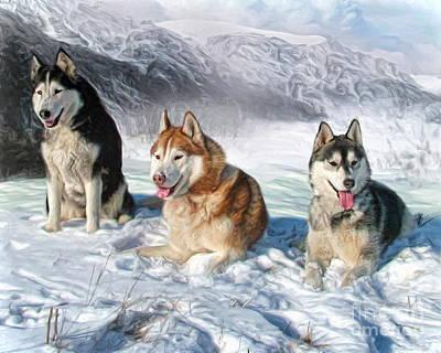 Alaskan Malamute Poster by Trudi Simmonds