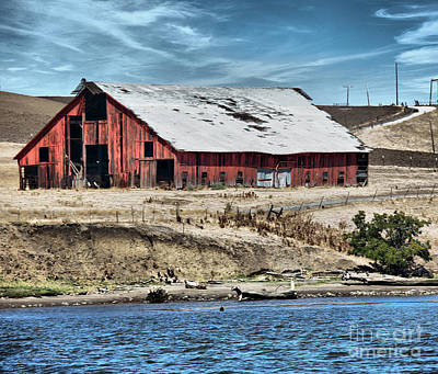 Barn By The River Poster by Cheryl Young