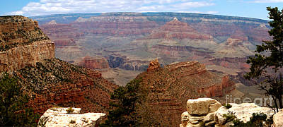 Grand Canyon Panoramic Poster by The Kepharts