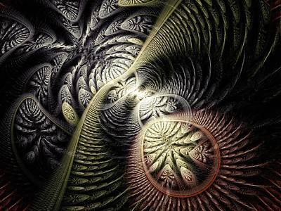 Trilobite Trail Poster by Anastasiya Malakhova