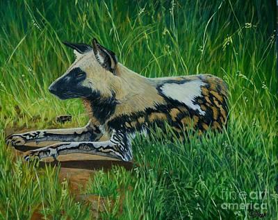 African Wild Dog Poster by Caroline Street